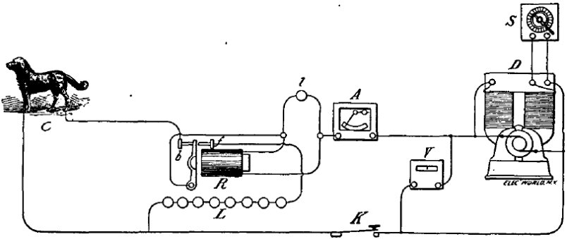 Executedtoday 1888 One Newfoundland For Thomas Alva Edison. Wiring. Edison System Wiring Diagram At Scoala.co