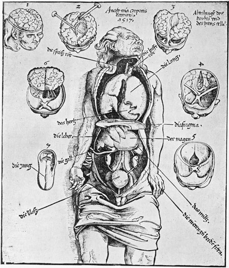ExecutedToday.com » anatomized
